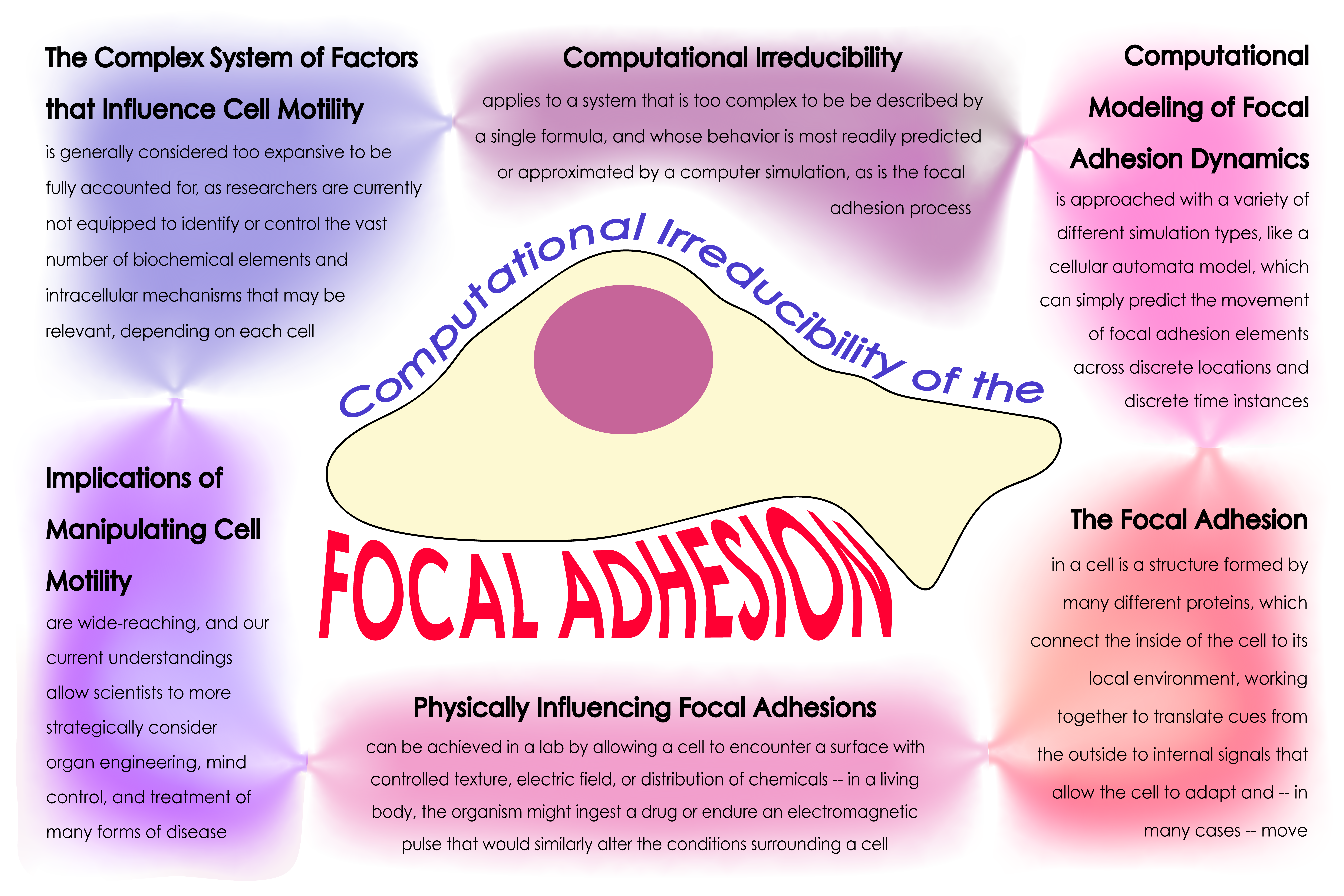 Poster about focal adhesions